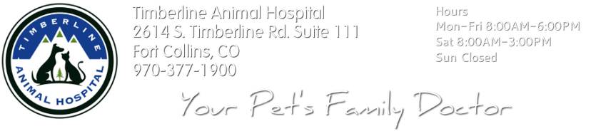 Timberline Animal Hospital Fort Collins